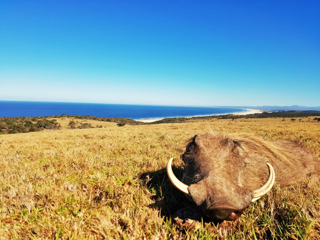 Father & Son Hunting Packages Eastern Cape